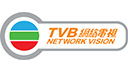 Jobs of TVB Network Vision