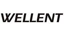 Wellent System Consultants Ltd