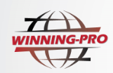 Winning-Pro Business & Investment (International) Limited